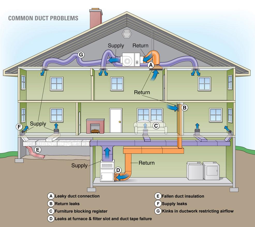 House-infographic-Copy.jpg